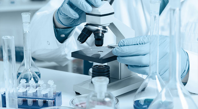 Laboratory Facilities